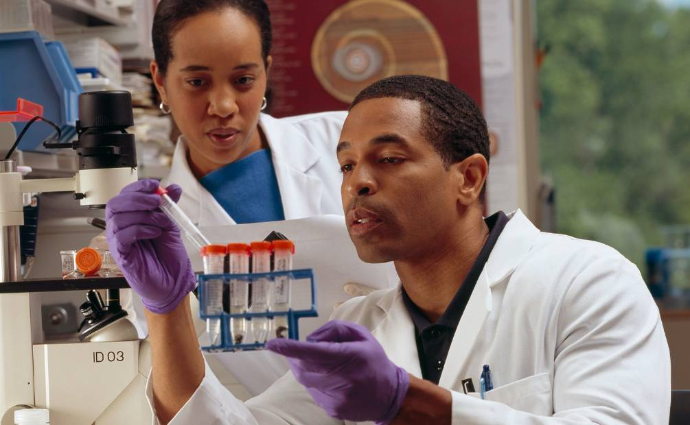 Two researchers at work